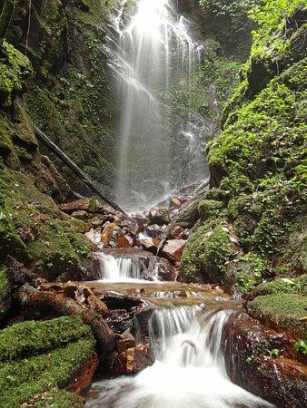 Jambi, إندونيسيا: Waterfall along Bukit Taipan