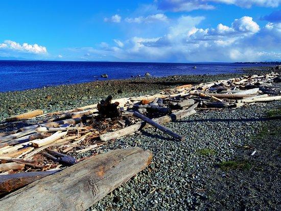 Rotary Sea Walk: BREATHTAKING SCENERY