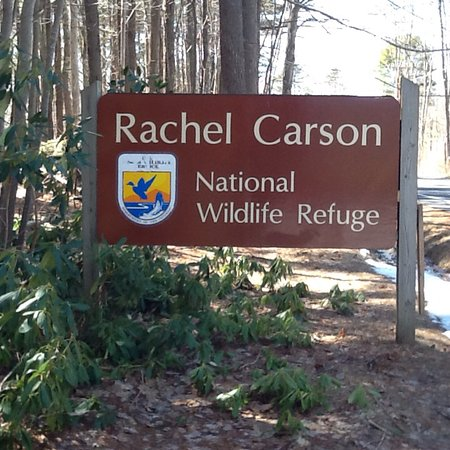 Rachel Carson National Wildlife Refuge: photo0.jpg