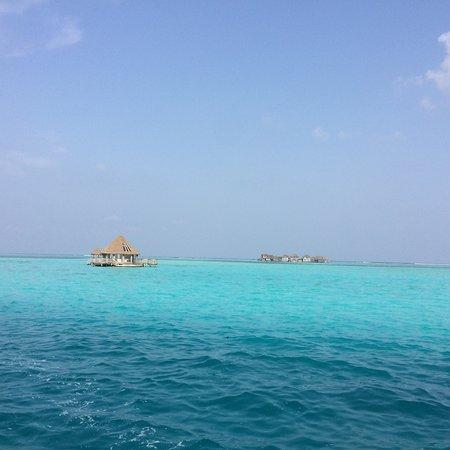 Dhifushi Island: photo1.jpg