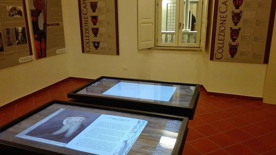 Museo del Libro - Casa della Cultura