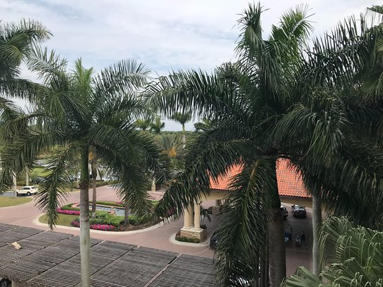 The Ritz-Carlton Golf Resort, Naples: View from room 4062 (the fountains looked great at night)