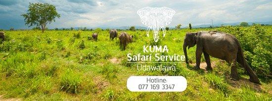 Udawalawa, سريلانكا: kuma safari service udawalawe