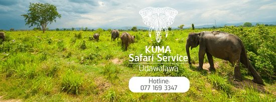 Udawalawa, Σρι Λάνκα: kuma safari service udawalawe