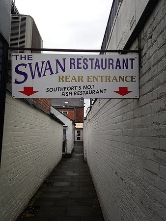 The Swan: DSC_0553_large.jpg