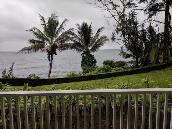 Honomu, هاواي: IMG_20180319_154233_large.jpg