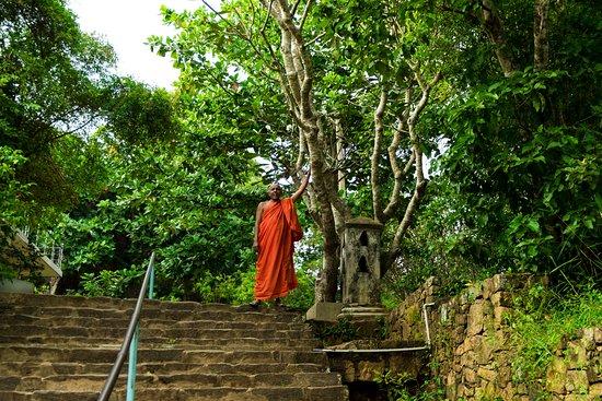 Nord de la Province du centre, Sri Lanka : Avukana Buddha Statue - the chief monk who's taking care of the site