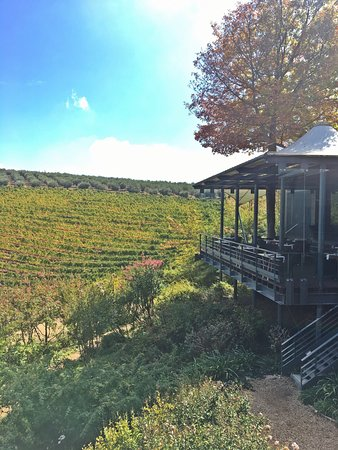 Tokara Wine Estate: photo2.jpg