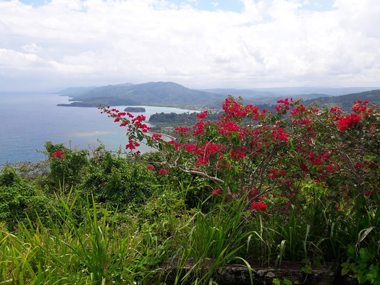 Jamaica: View from Firelfy