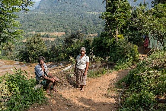Knuckles range trekking near Meemure - locals
