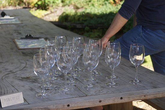 Pulau Waiheke, Selandia Baru: Glasses set out to begin the wine tasting
