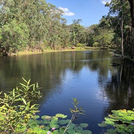 Maraylya, أستراليا: photo2.jpg