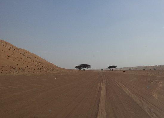 Ghuwayfat al Habb, Oman: Drive to the camp