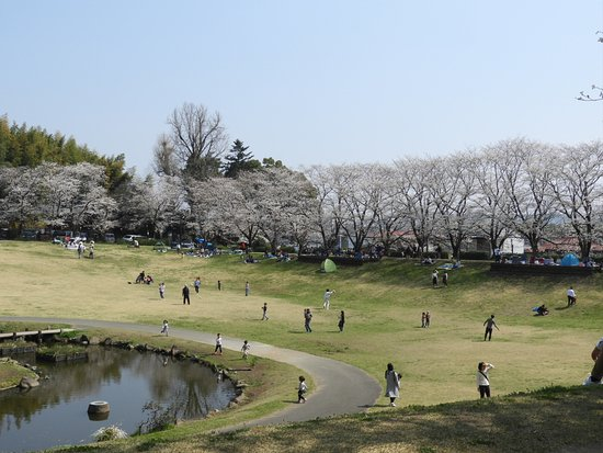 Myosen-ji Park