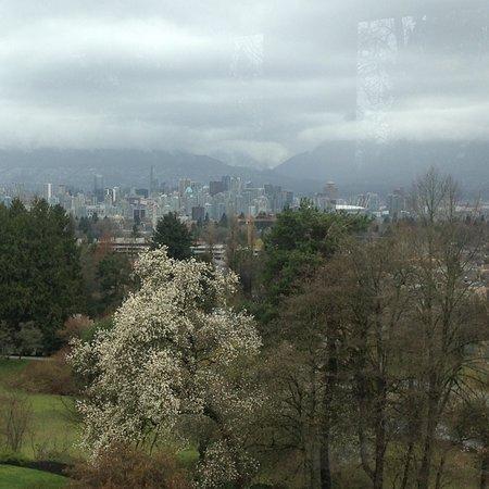 Seasons in the Park: photo0.jpg