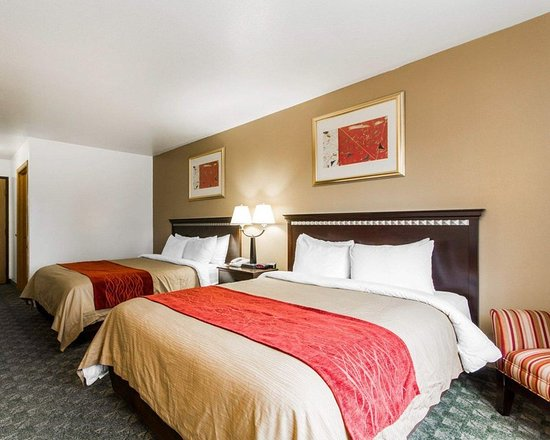 Edgerton, WI: Guest room