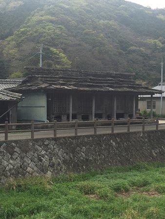 Shiineno Ishiyane
