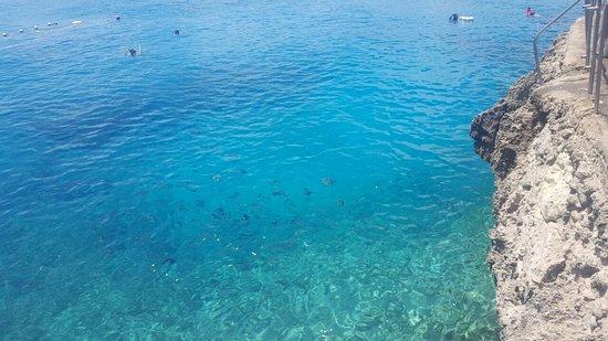 West View: Mar calmo