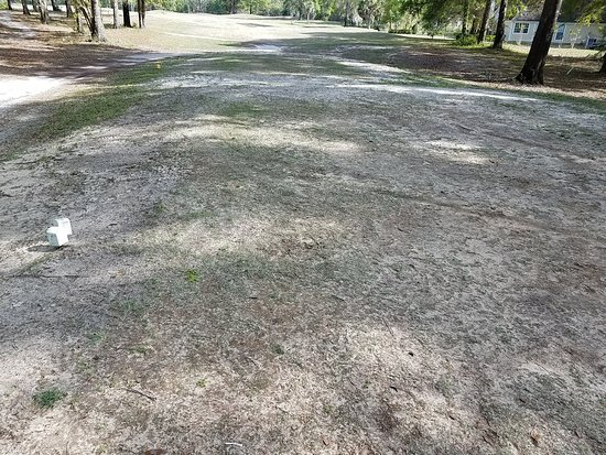 Crawfordville, FL: This is one of the tee boxes. Notice the lack of grass anywhere.