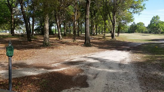 Crawfordville, FL: This is looking down a fairway of one of the holes.