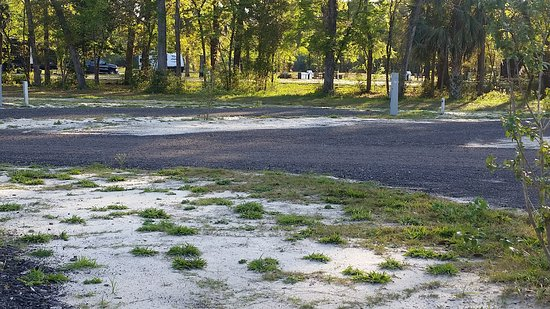 Crawfordville, FL: This is the road in front of our campsite
