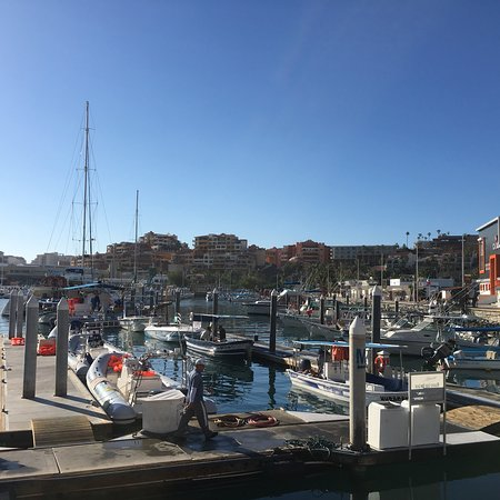 Marina Cabo San Lucas All You Need To Know Before You Go