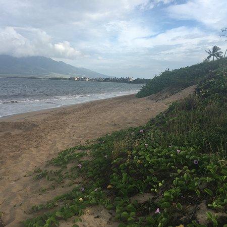 Ocean Breeze Hideaway: photo4.jpg