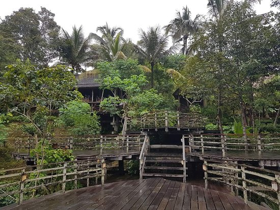 Bali Pulina Agro Tourism: FB_IMG_1523161729542_large.jpg