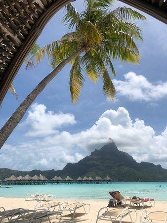 Emejing Bora Bora Prezzi Images - ubiquitousforeigner.us ...