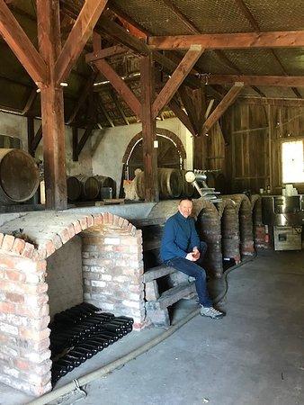 Fernhill, New Zealand: Winery - Eskdale