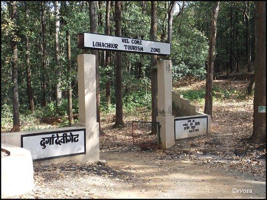 Durga devi gate - Picture of Durga Devi Zone, Jim Corbett National ...