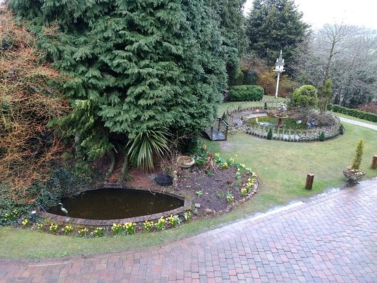 Hockley Heath, UK: IMG_20180329_182819722_large.jpg