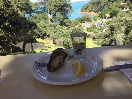 Pulau Waiheke, Selandia Baru: Oyster Shooter at Kennedy Point