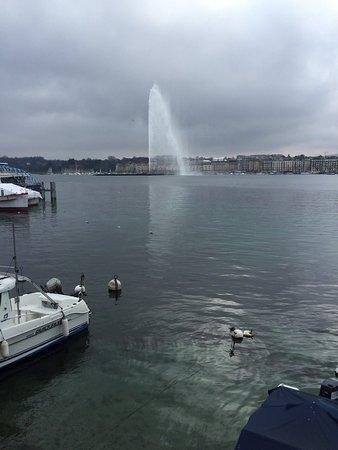 Geneva on the Lake: IMG-20150215-WA0010_large.jpg