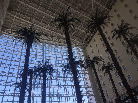 ชาเตอร์เรส กาโตว์ คิงดอม ซัปโปโร: Towering trees