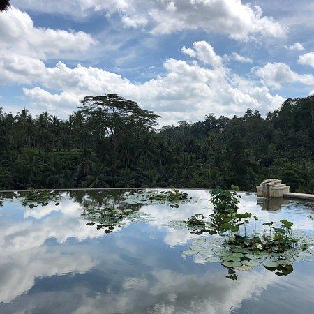Best hotel in Ubud