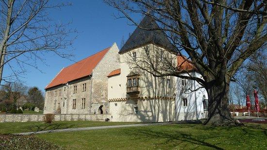 Schloss Schoeningen