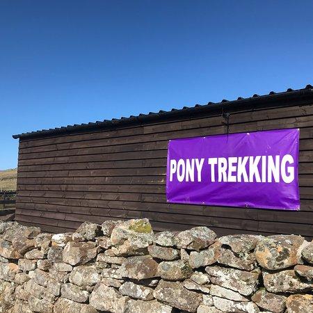 Free Spirit Trekking Centre照片