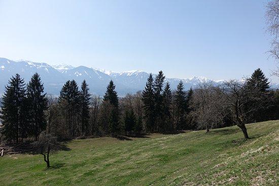 Landgasthof Ploeschenberg: Was soll man zu diesem Ausblick sagen? Paradies