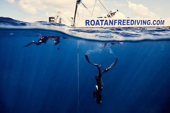 Roatan Freediving School & Training Center