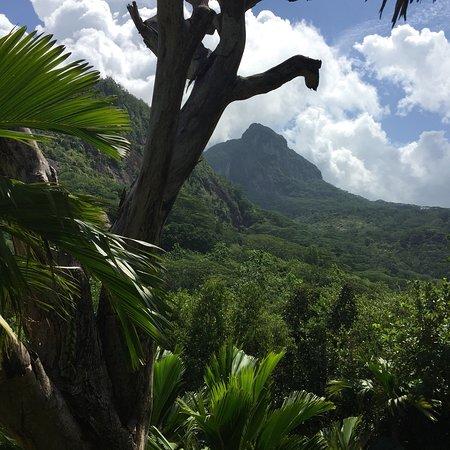 Port Glaud, Seychelles: photo5.jpg