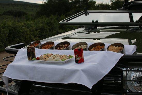 Addo, South Africa: Picknick während des Gamedrives