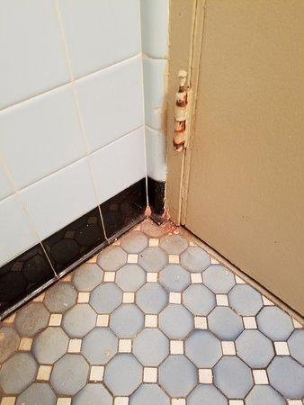 Days Inn by Wyndham Arlington/Washington DC: Floor behind bathroom door