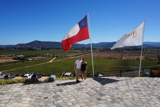 ilovechile Tours: Wine tasting on our Chile Tour