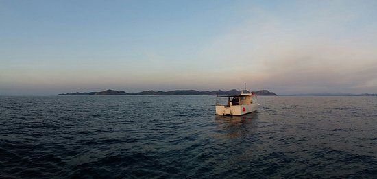 Mallorca Fishing Charter