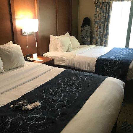 Comfort Suites Beaufort Near Parris Island: photo2.jpg