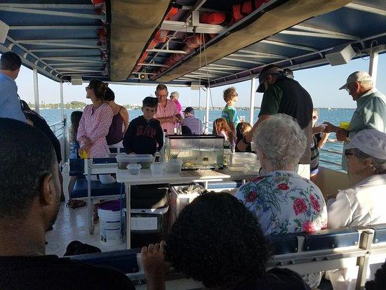 Sarasota Bay Explorers : Ryan showing the creatures and the passengers passing them around