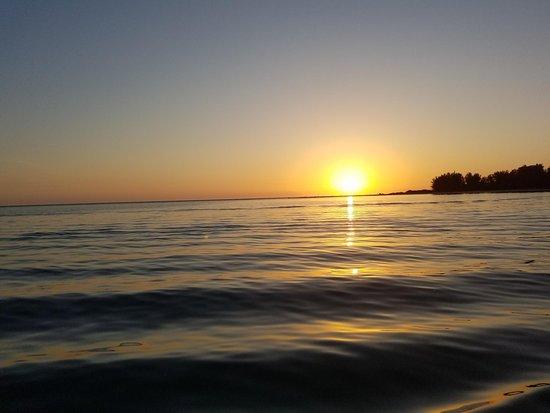 Sarasota Bay Explorers : Sunset