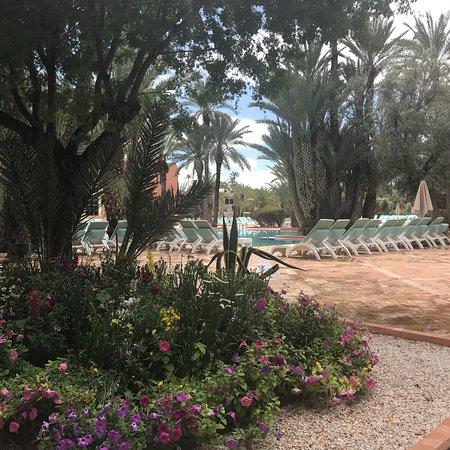 Club Med Marrakech La Palmeraie Photo
