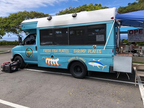Located On Lowe S Parking Lot When We Visited Picture Of Island Roots Kailua Kona Tripadvisor 2020 holiday hours (saturday, sunday, 4th of july, labor day, thanksgiving) and today's opening /closing times. picture of island roots kailua kona